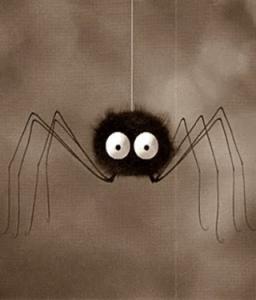 chez od et moi araignée