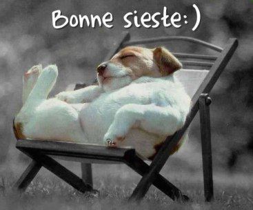 bonne-sieste_001.jpg